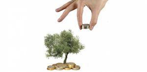Subsidies voor duurzaamheid